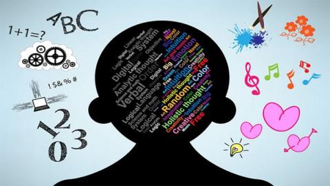 清华大学公开课:心理学概论