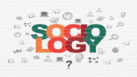 北京大学公开课:社会学概论